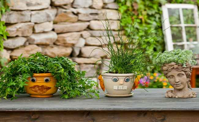 Cute Planters For Your Garden! Buy Plants For Your Garden